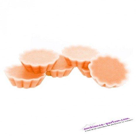 Lot de 6 Pastilles Parfumées Pulpe d'Orange
