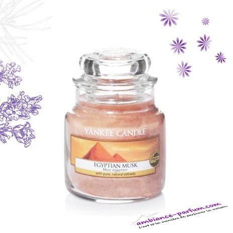Bougie Parfumée Yankee Candle - Egyptian Musc