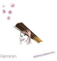 Bâtons d'encens GALÉO x 10 - Féminin