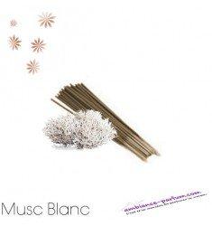 Bâtons d'encens GALÉO x 10 - Musc Blanc