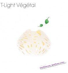 Photophore GOA - Végétal Lin