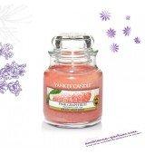 Bougie Yankee Candle - Pink Grapefruit