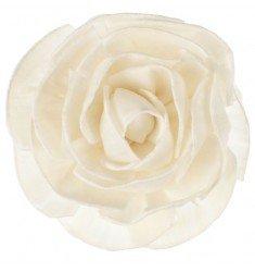 Fleur de Goatier - GOA - Fleur ROSÉA