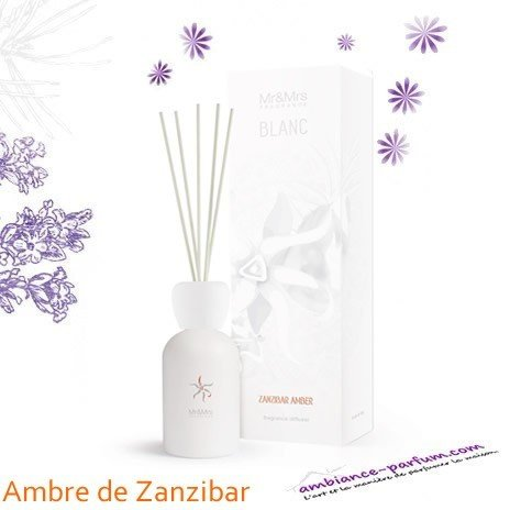 Diffuseur Blanc Mr & Mrs Fragrance - Ambre Zanzibar