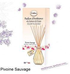 Diffuseur rotins Galéo - Pivoine Sauvage