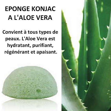 Eponges Konjac à l'Aloe Vera