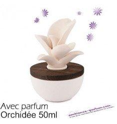 Diffuseur Fleur de Jasmin + Parfum Orchidée