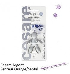 Diffuseur CESARE Argent - Orange Santal