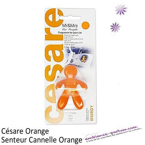 Diffuseur CESARE Cannelle Orange