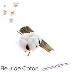 Bâtons d'encens GALÉO x 10 - Fleur de Coton