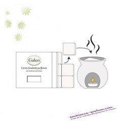 Carrés fondants parfumés - Pivoine Sauvage